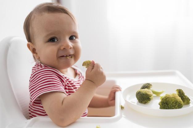 panduan mpasi untuk bayi usia 6-12 bulan