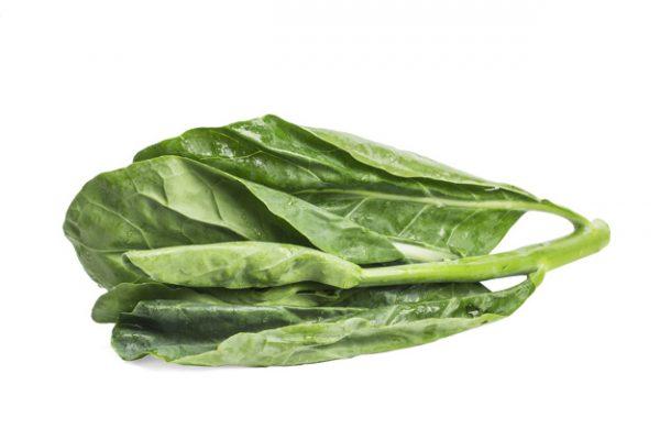 manfaat kale untuk kesehatan