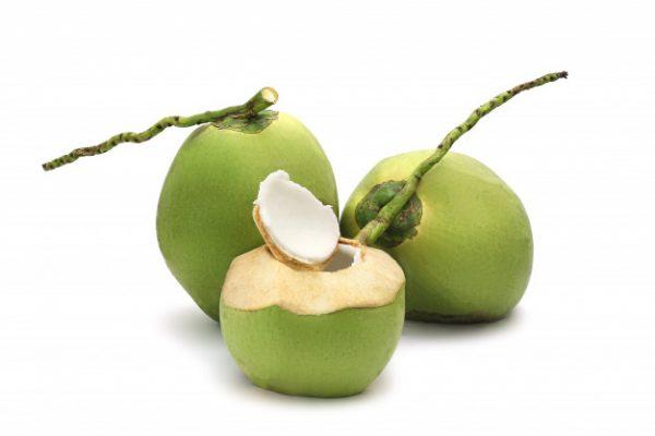 manfaat buah kelapa untuk buka puasa
